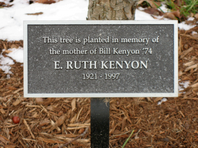 The price of your tree will include the tree of your choice, a personalized plaque and the planting. Four lines are available on the plaque to include your message or dedication.